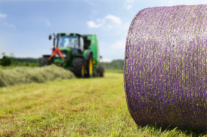 purple bale net