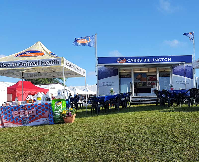 Carrs Billington show office