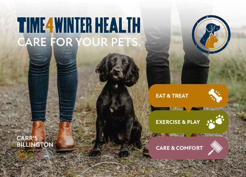 time for winter health
